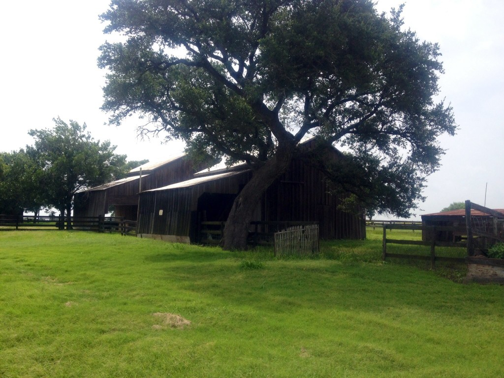 Farm-Old barns