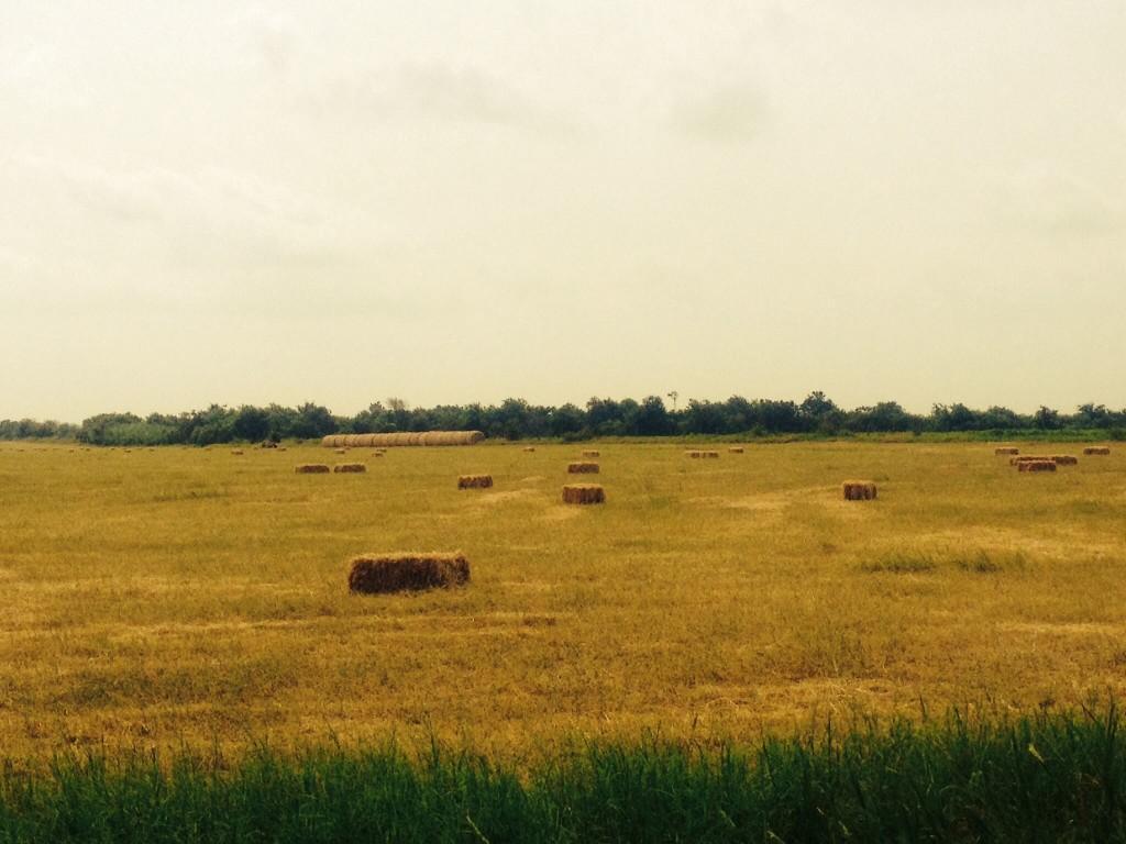 Farm-haybales